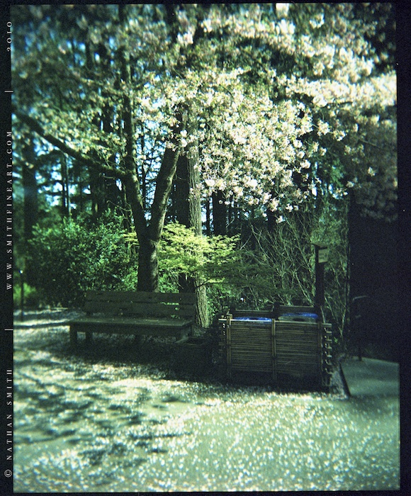 BLOG_2010-03-25_[2 of 2].jpg