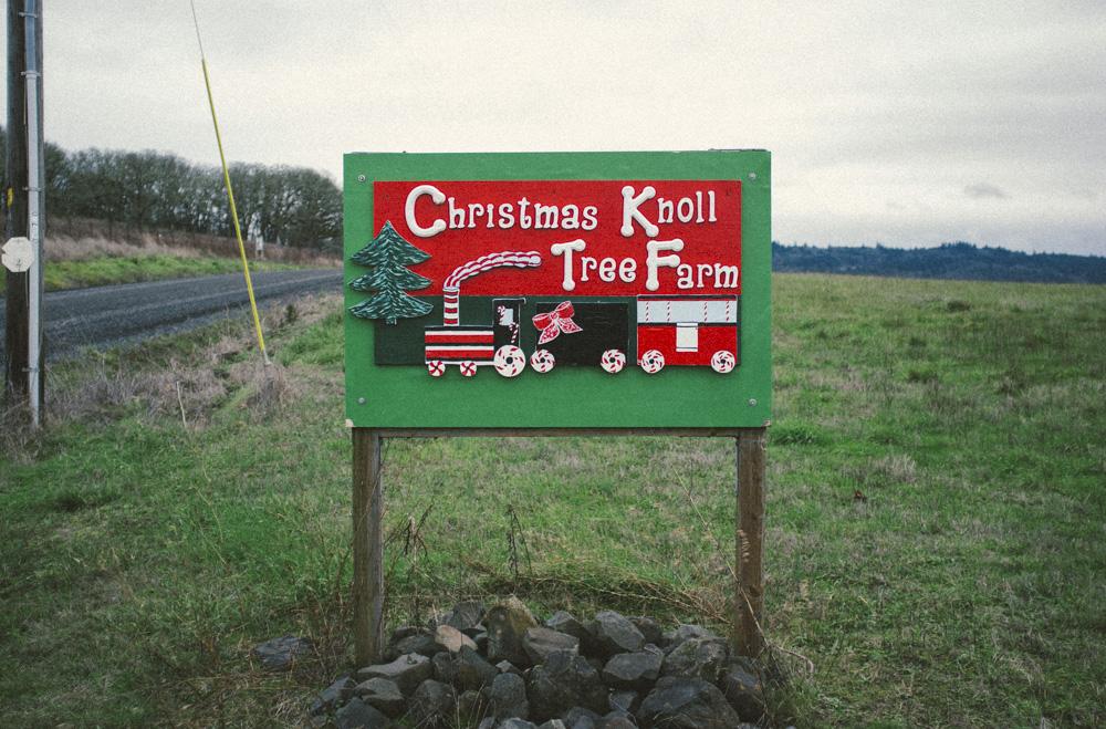 Christmas-Tree-Farm-0013.jpg