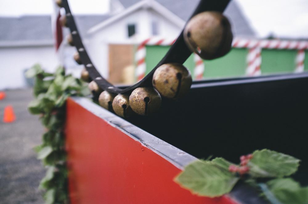 Christmas-Tree-Farm-0010.jpg