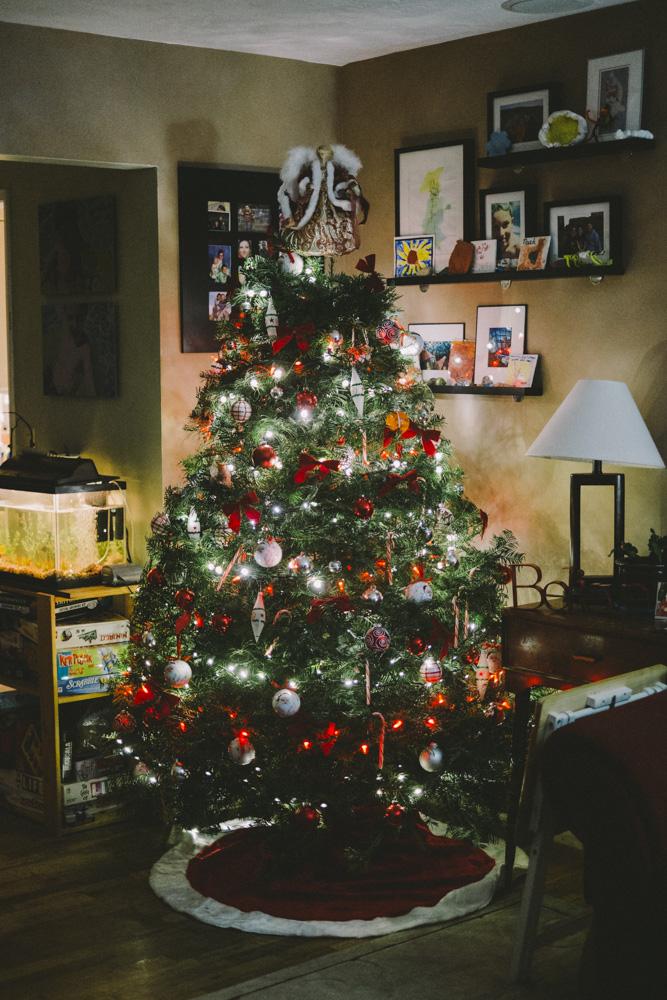 Christmas-Tree-Farm-0019.jpg
