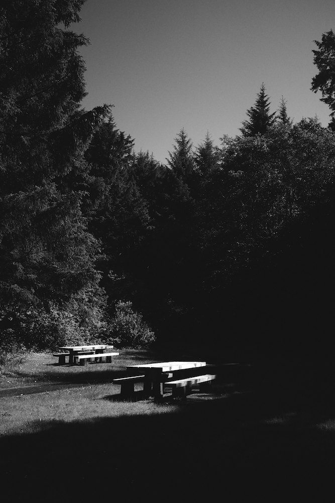 Oregon-Coast-B&W-X100s 021.jpg