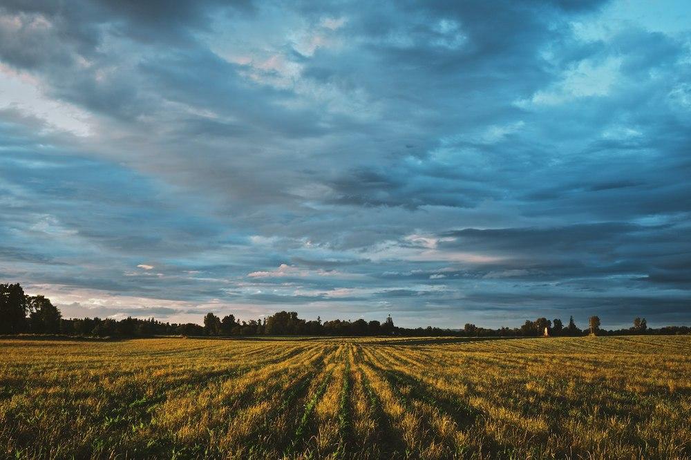 Sunset-On-The-Farm 004.jpg