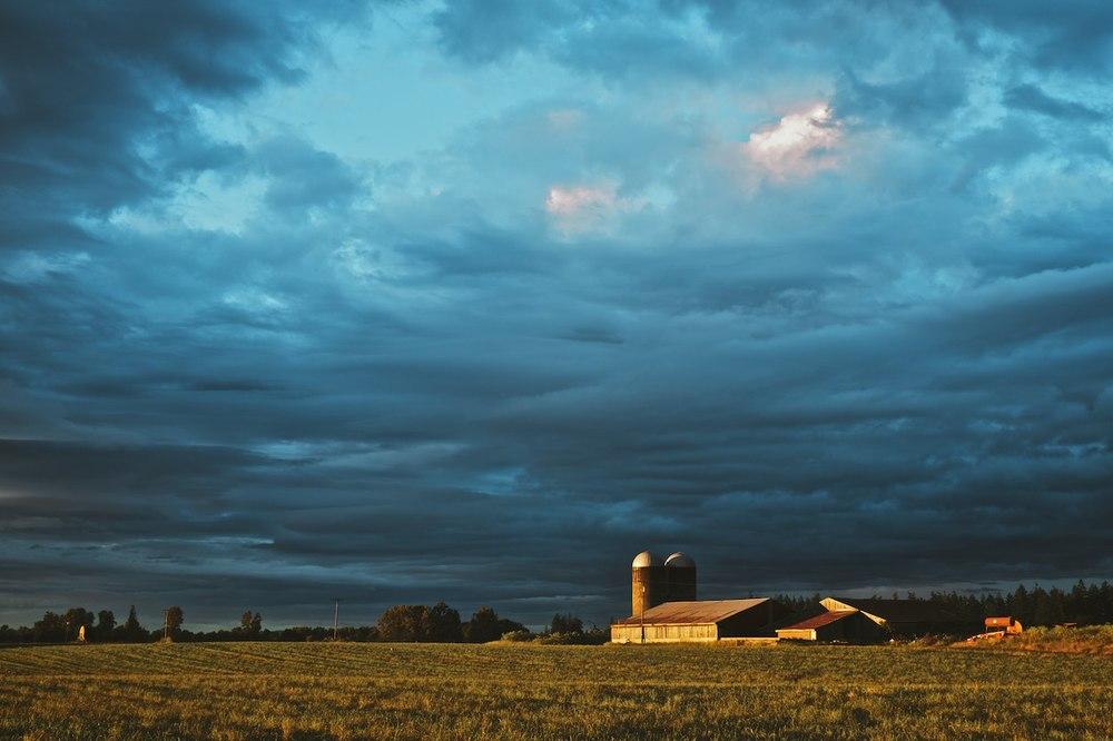 Sunset-On-The-Farm 005.jpg