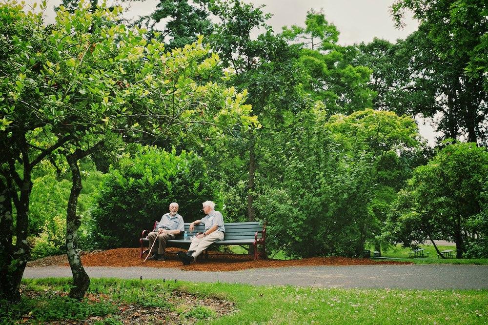 Scouting-Bush-Park 005.jpg