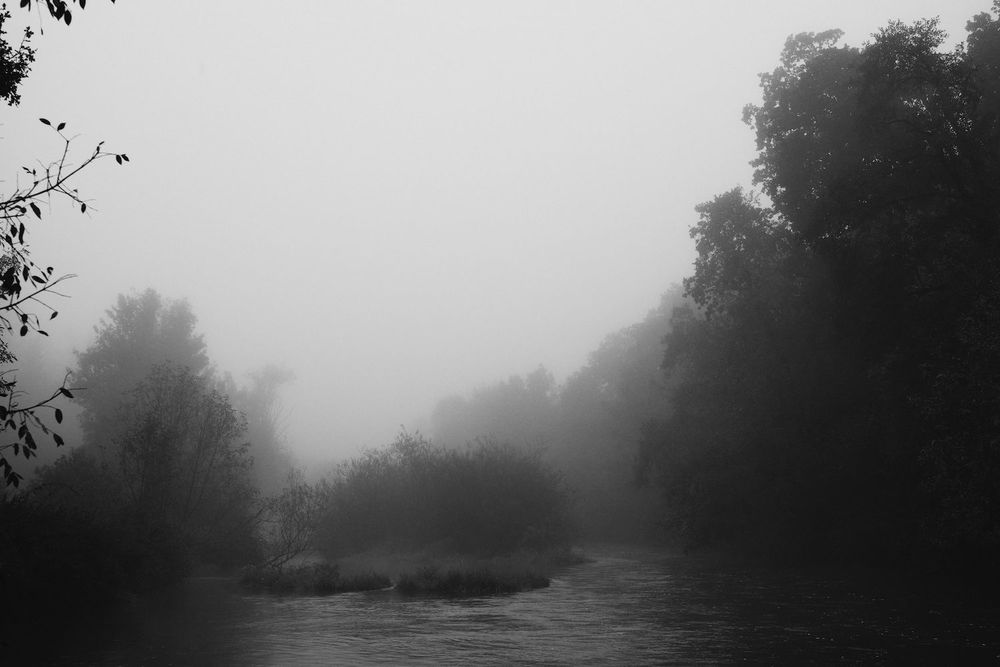 2013-10-03-Foggy Morning-090.jpg