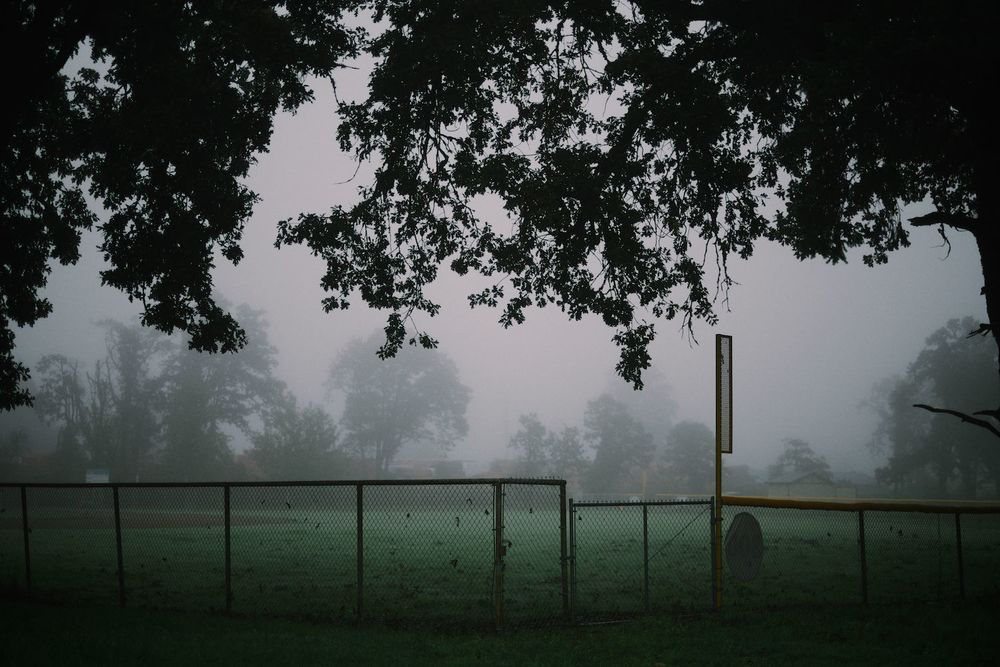 2013-10-03-Foggy Morning-098.jpg