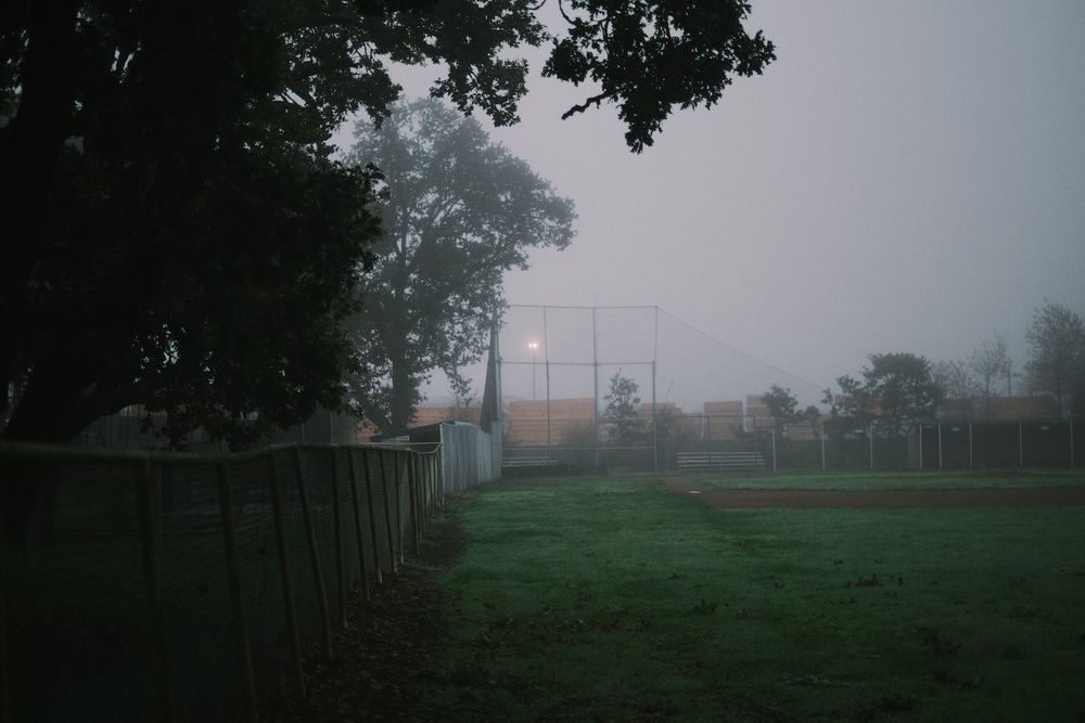 2013-10-03-Foggy Morning-099.jpg
