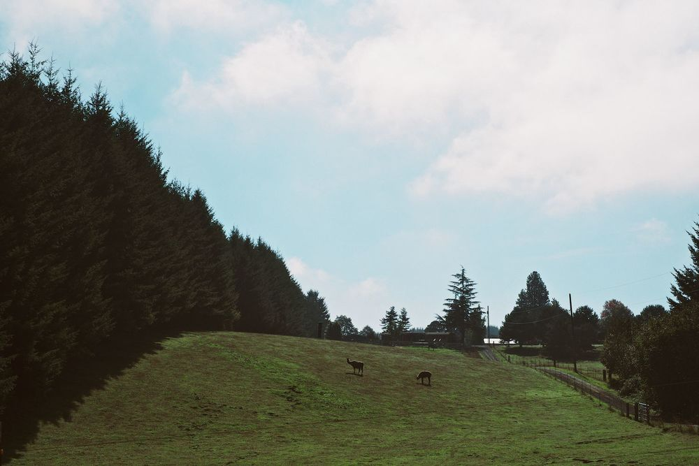 2013-10-04-Country Roads-001.jpg