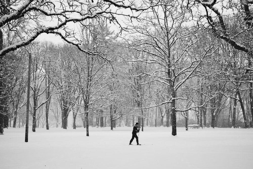 2014-02-07-Snow Storm-018.jpg