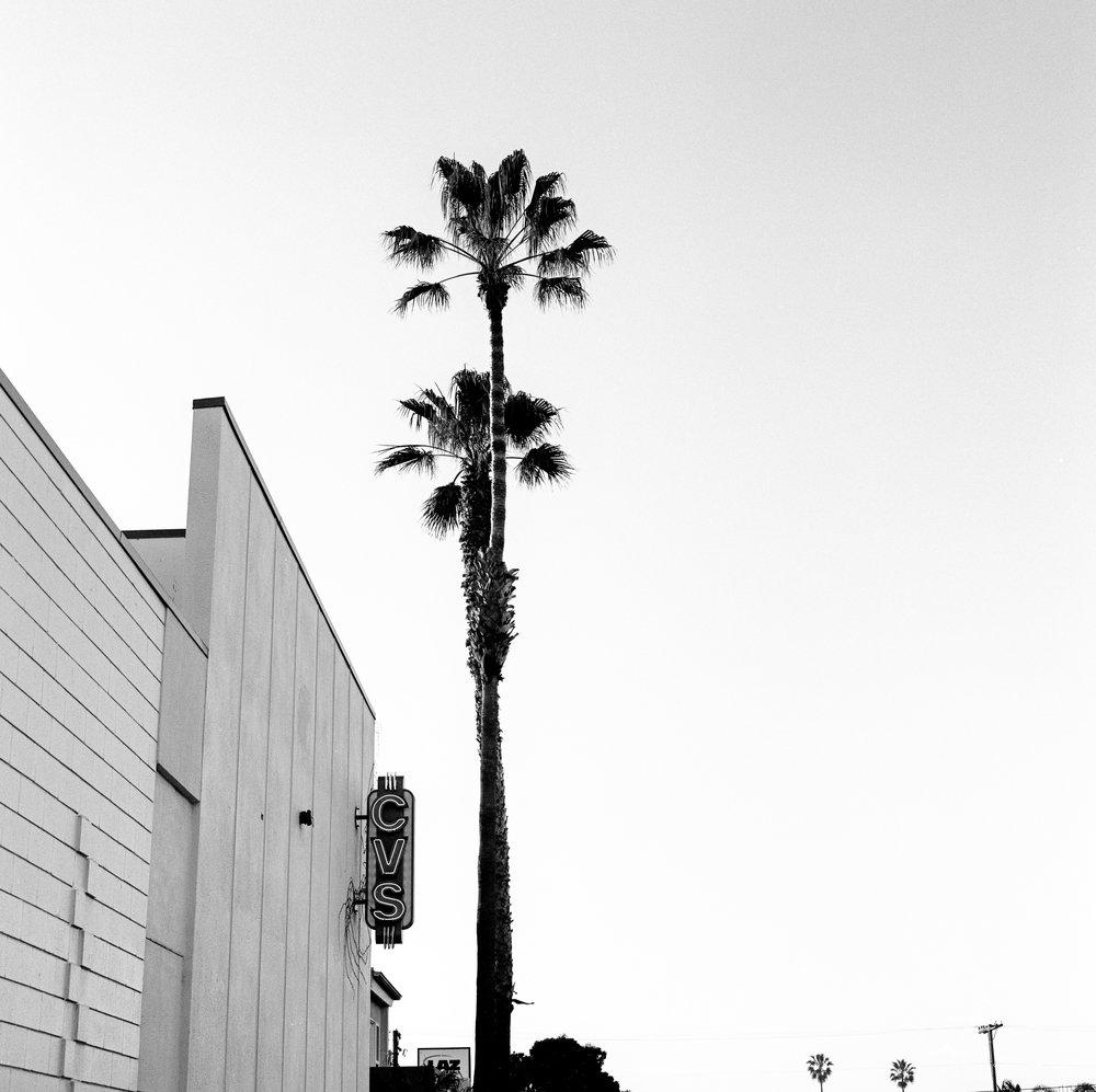 07-03.jpg