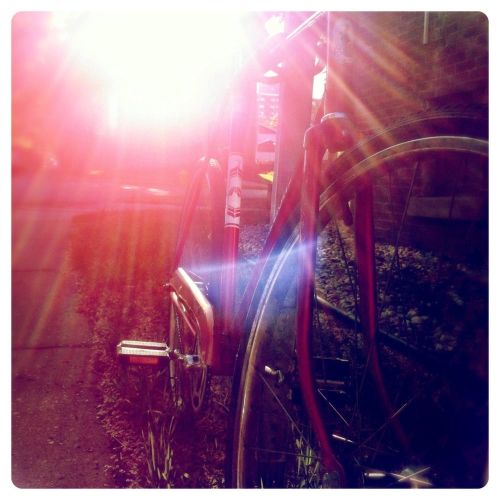 bicycle in evening sun