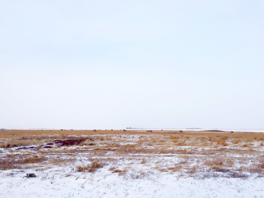 the Saskatchewan prairie in winter