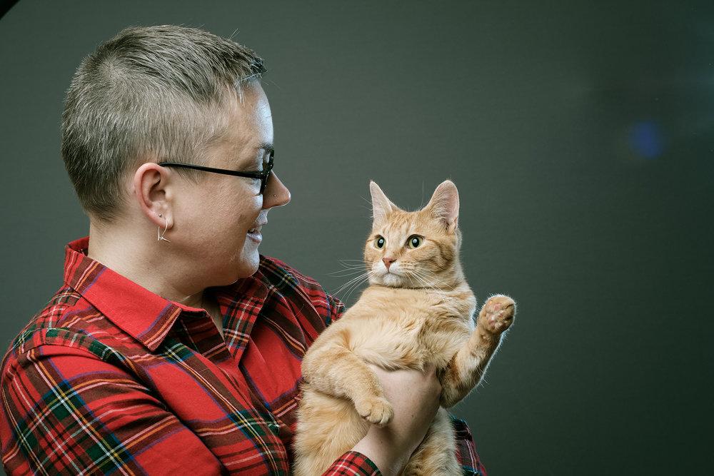 all cats-3.jpg