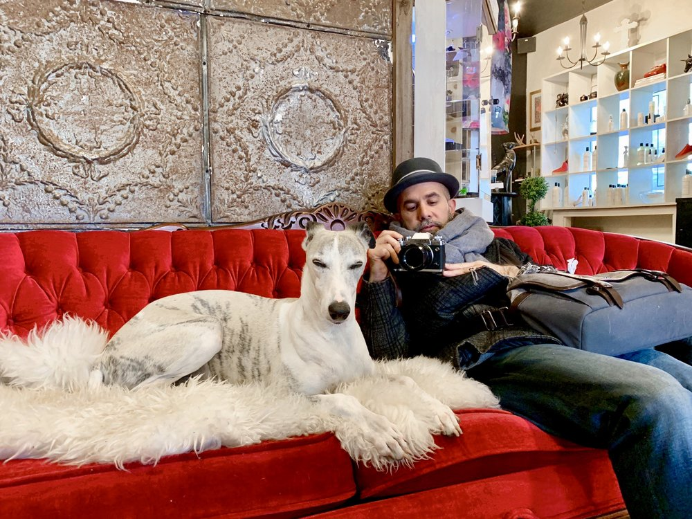 Aidan sitting next to the greyhound Miguel and taking his photo on Seed Shoppe's red velvet sofa