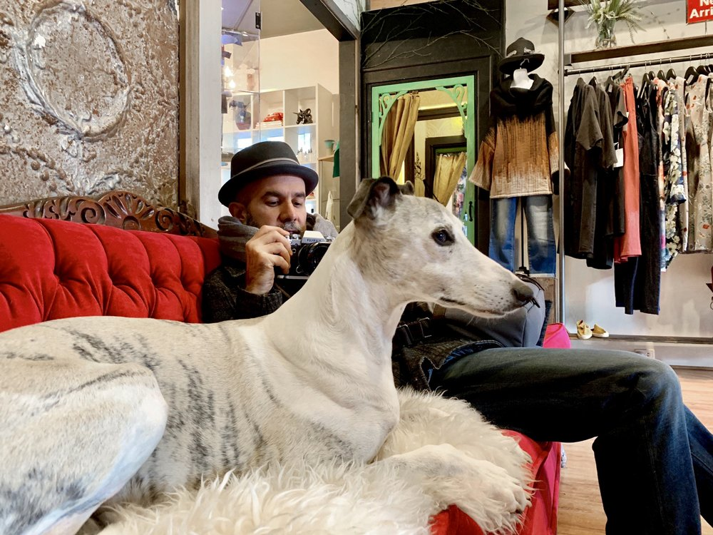 Aidan sitting next to the greyhound Miguel and taking his photo on Seed Shoppe's red velvet sofa with Miguel in the foreground