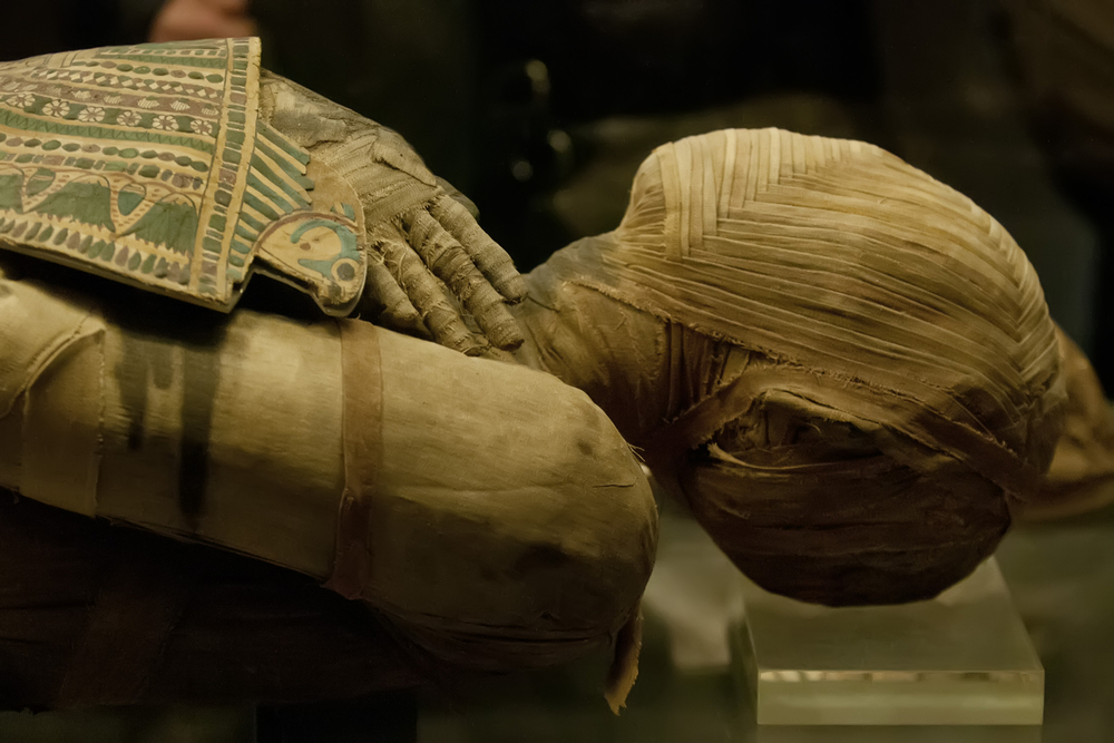 Amateur diggers don't need to find anything as dramatic as this ancient Egyptian mummy (courtesy of Shutterstock). A few scarabs or statuettes will do.