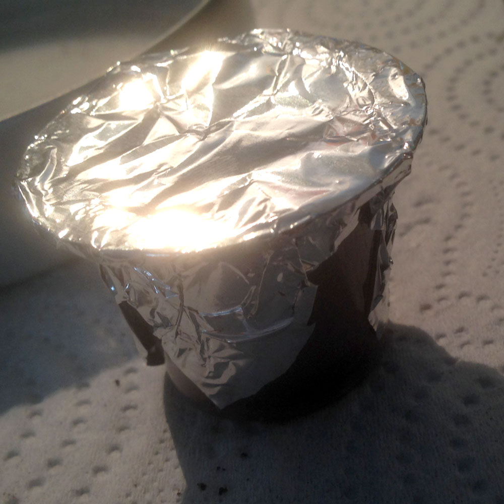 Cover the top of the pod with a small square of tin foil