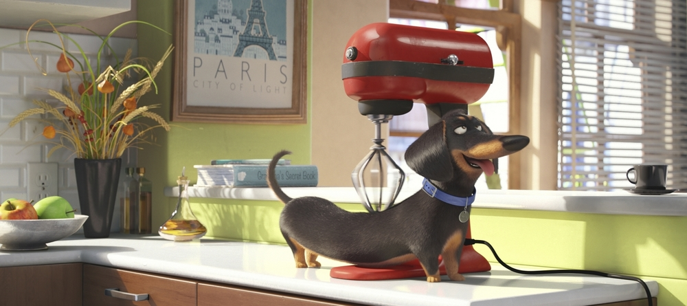 "Buddy (HANNIBAL BURESS) is a sarcastic dachshund in Illumination Entertainment and Universal Pictures' ""The Secret Life of Pets,"" a comedy about the lives our pets lead after we leave for work or school each day."