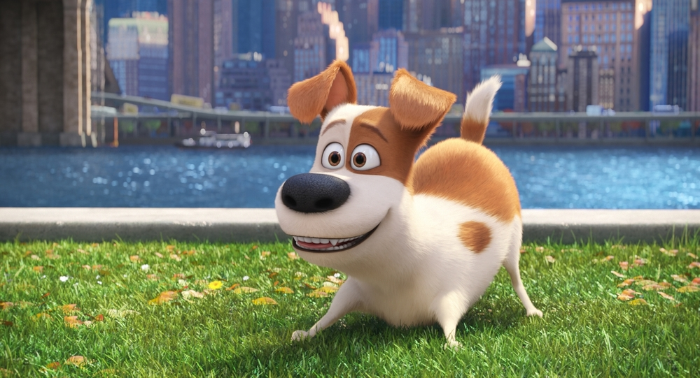"Max (LOUIS C.K.) is a pampered terrier mix in Illumination Entertainment and Universal Pictures' ""The Secret Life of Pets,"" a comedy about the lives our pets lead after we leave for work or school each day."