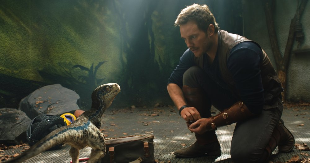 """Owen (CHRIS PRATT) with a baby Velociraptor in """"Jurassic World: Fallen Kingdom.""""  When the island's dormant volcano begins roaring to life, Owen and Claire (BRYCE DALLAS HOWARD) mount a campaign to rescue the remaining dinosaurs from this extinction-level event.  Welcome to """"Jurassic World: Fallen Kingdom."""""""
