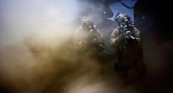 seals-in-smoke1.jpeg