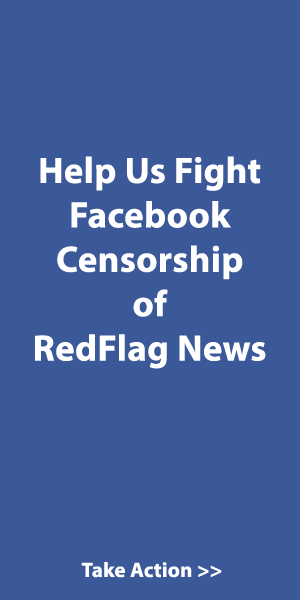 Facebook-Fight-Ad1.png