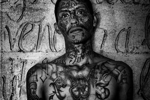 """""""MS-13 is a violent transnational gang whose presence in Texas is growing,"""""""