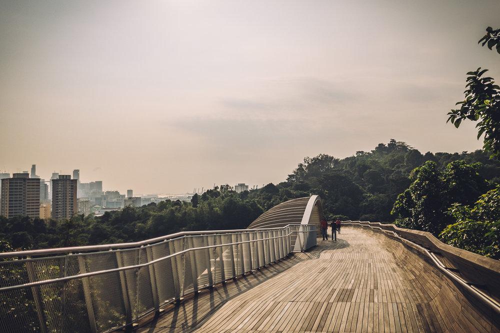 Singapore-Feb-18-8.jpg