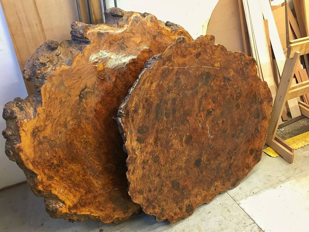 "Oh my goodness gracious- I just dragged in these epic oak burls. They had been darkening a friend and neighbor's doorstep for too long, and it was time for them to go. They were apparently harvested in California forty years ago, and have been sitting in one garage or another ever since. They are both roughly 4' in diameter and 5"" thick. I have no idea what I am going to do with them, but I am *really* excited. As the saying goes, ""Wood like this doesn't just grow on trees."" #woodscore #qualityneighbor"