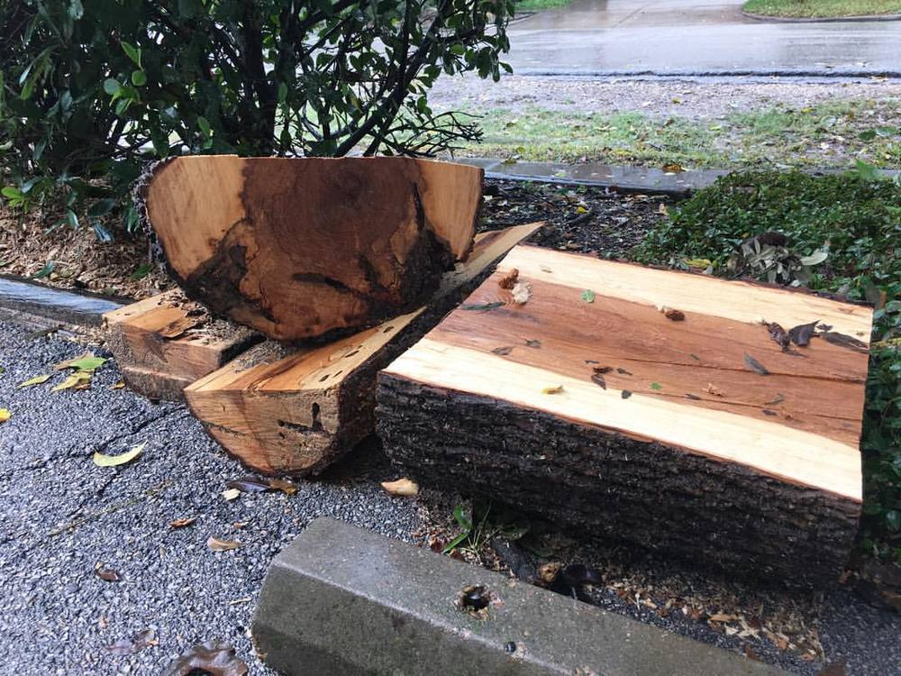 Rounding up some pretty cool spalted hackberry on this very soggy Sunday afternoon. This tree was overlooking a playground, and had gotten to the point where a good, hard stare would have knocked it over. I'm excited to see what comes of this wood. #madeinhouston #montrose