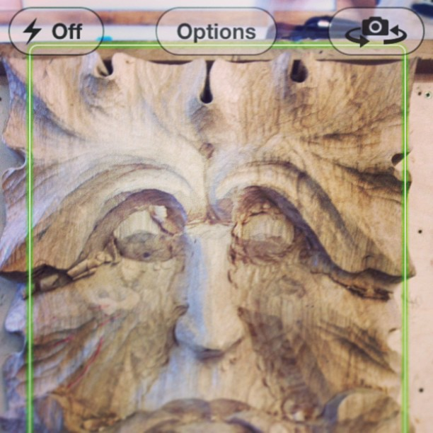 I got really excited when my phone turned on the facial-recognition- dealie. #greenman