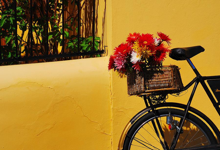 Cape Bike