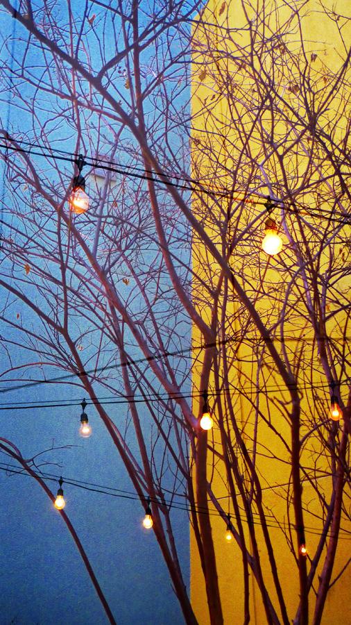 Twilights Last Gleaming 2