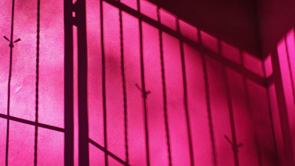 Rosa's Prison