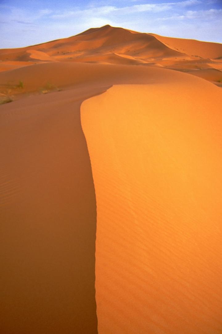 Sahara Dawn