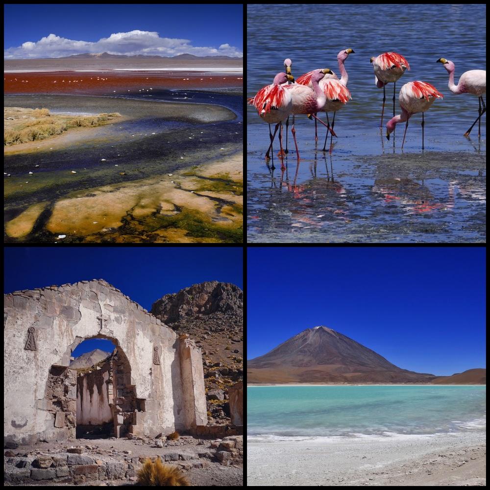 Salar Lagoon + Flamingos + Salar Tour Ruins + Lagoon of Arsenic