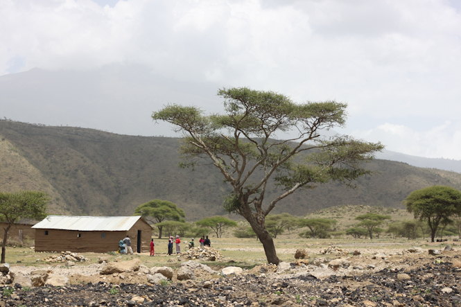 Africa-41.jpg