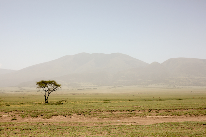 Africa-265.jpg
