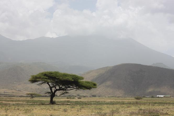 Africa-68.jpg