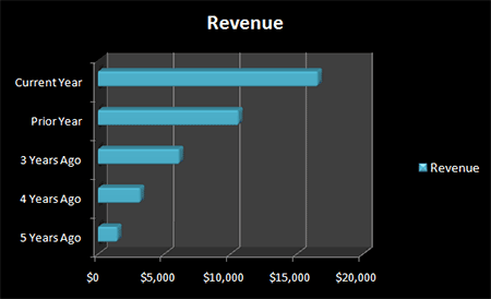 Figure 2. Google's 5-year Revenue Growth