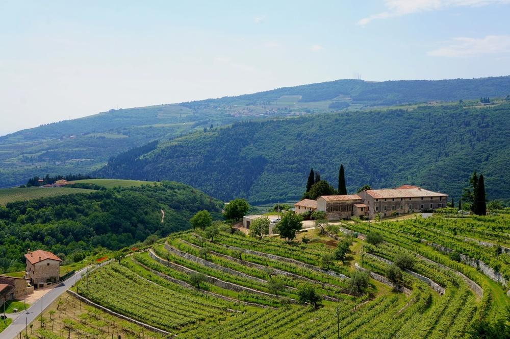 Valpolicella landscape