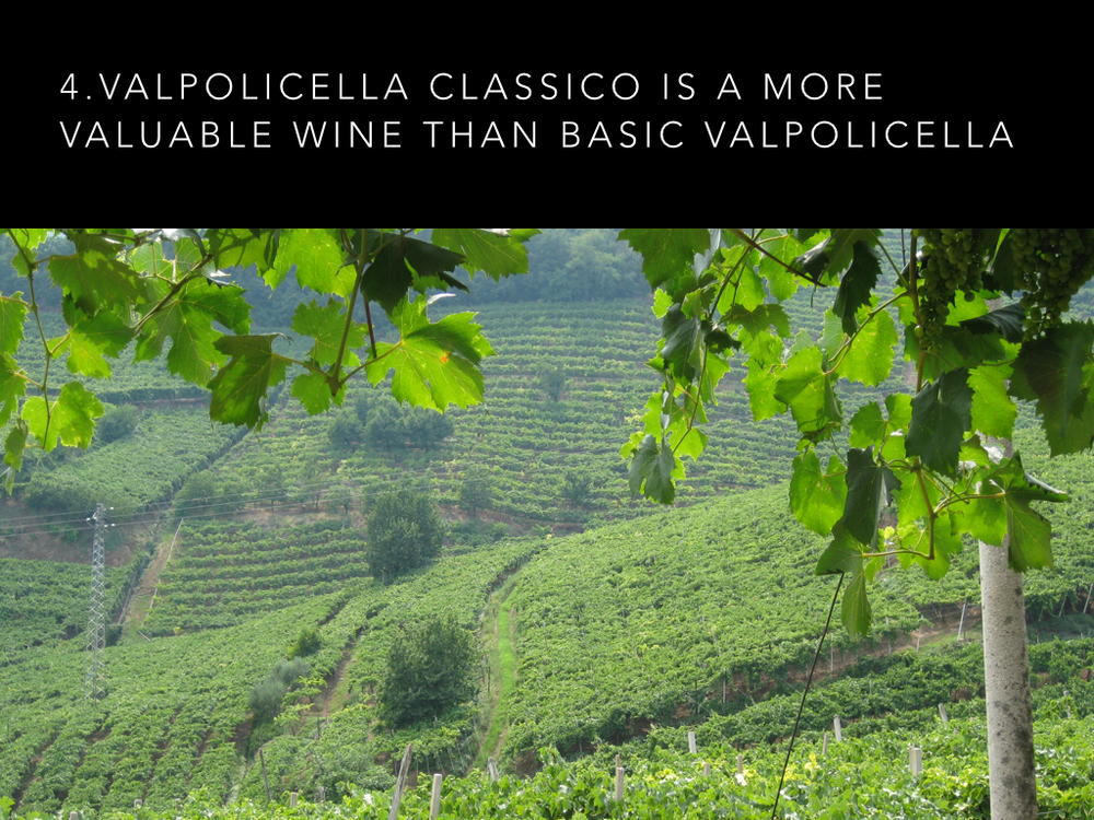 9 Valpolicella facts #2.006.jpg
