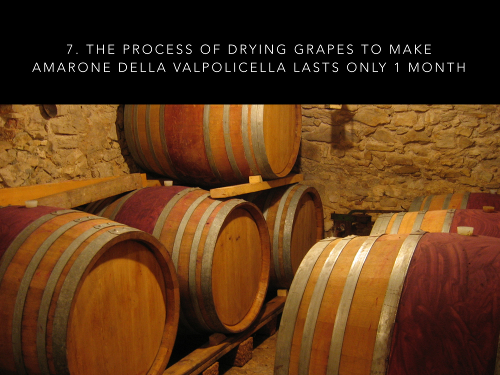 9 Valpolicella facts #2.011.jpg