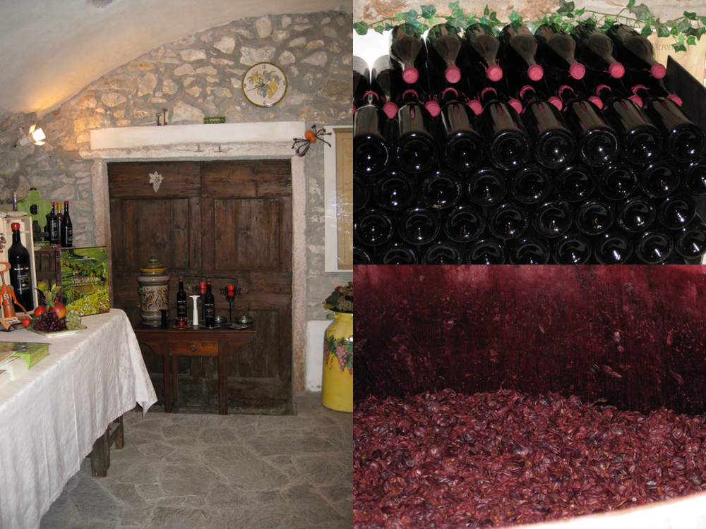 9 Valpolicella facts #2.013.jpg
