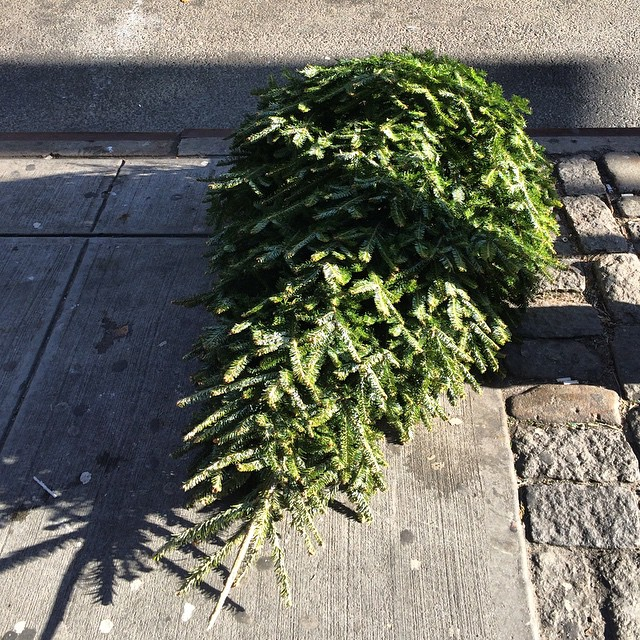 Happy New Years! #trashnyc #nyc #garbage #Xmas #christmas tree