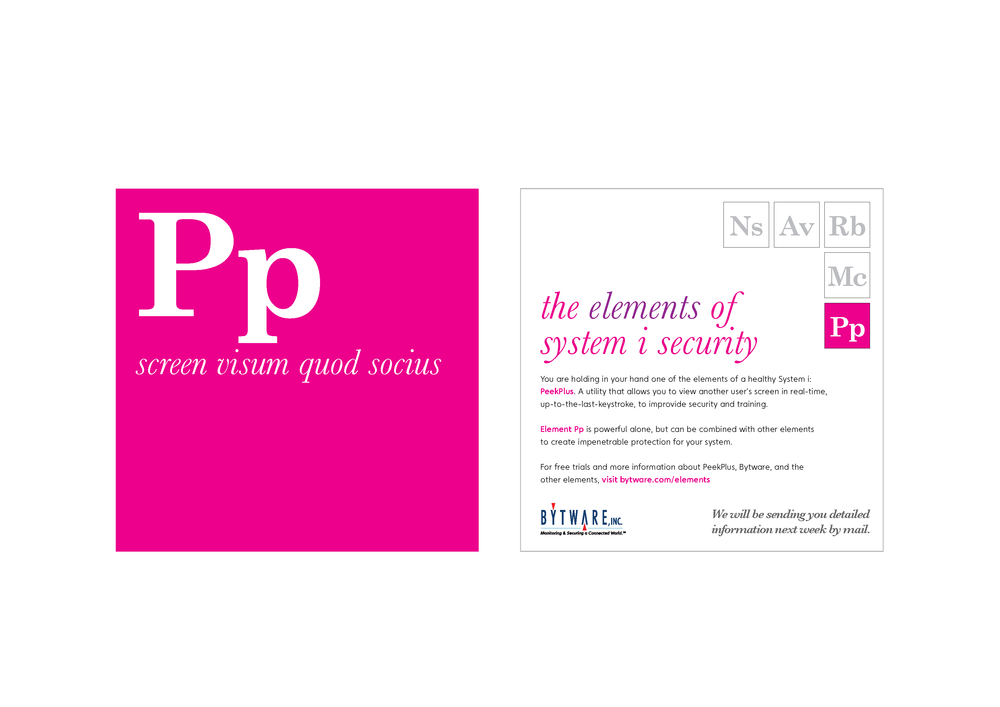 elements of security cards pp.png