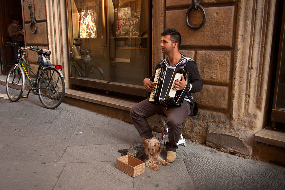 Street musician and dog, Siena
