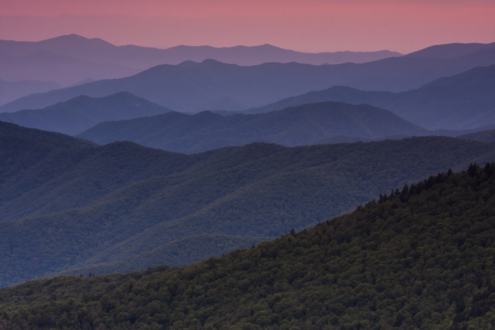 2009_06_16_nature00590Great_Smokies_Vista.jpg