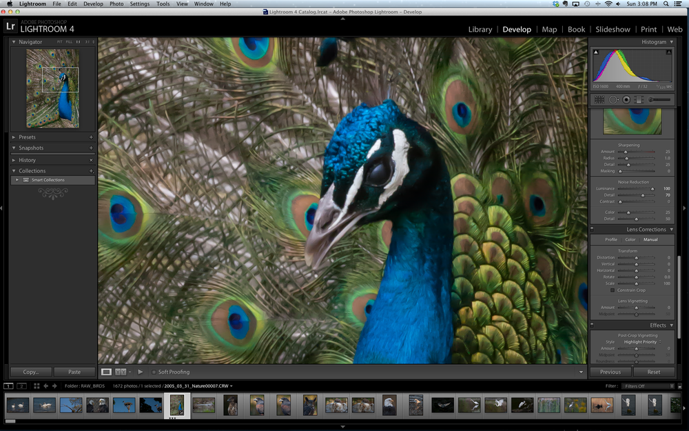 Example 2:  After basic noise reduction applied in Lightroom 4.