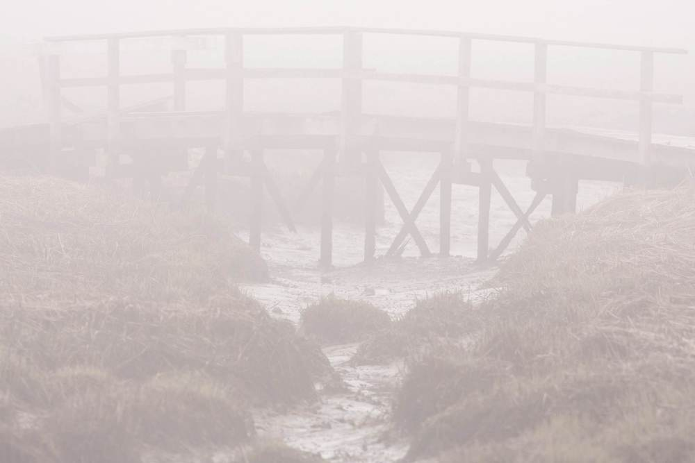 foggy_foot_bridge_oceanside.jpg